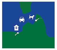 bec n call transportation, car service, errands, notary, pet sitting